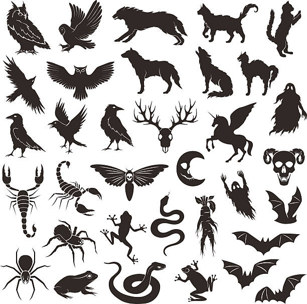 halloween characters collection. - reptiles stock illustrations