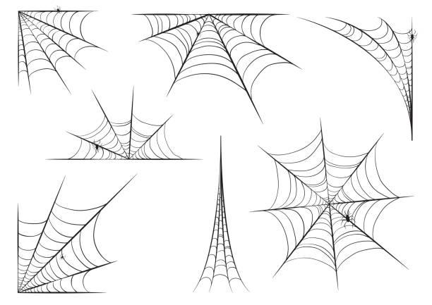 illustrazioni stock, clip art, cartoni animati e icone di tendenza di halloween cobweb set in hand style with spiders. vector illustration design. - web