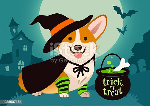 Halloween cute smiling welsh corgi dog in witch costume, black hat and cape, green bubbling potion brewing in trick or treat cauldron. Spooky night scene with full moon, haunted house, forest cemetery