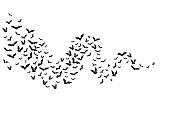 ハロウィン フライング バット。散乱の戦士からの装飾要素