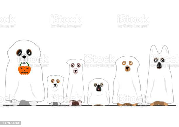 Halloween ghosts dogs in a row vector id1178900901?b=1&k=6&m=1178900901&s=612x612&h=leacpoucf3yah465kqiobydfpfa5invabdssg3zdivw=