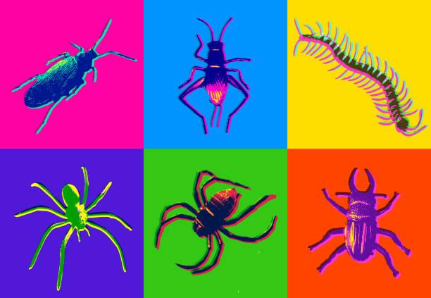 halloween insect icons - tarantula stock illustrations