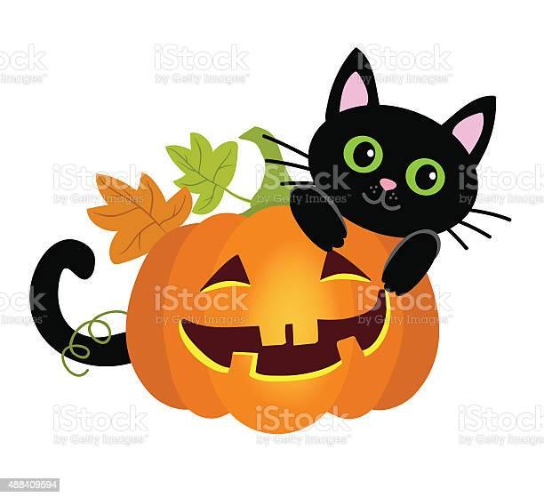 Halloween kitty cat and funny pumpkins vector illustration vector id488409594?b=1&k=6&m=488409594&s=612x612&h=uecogabcbcmkfqv7pcgbsfzhn zkt0bq ksh 3c6rlm=