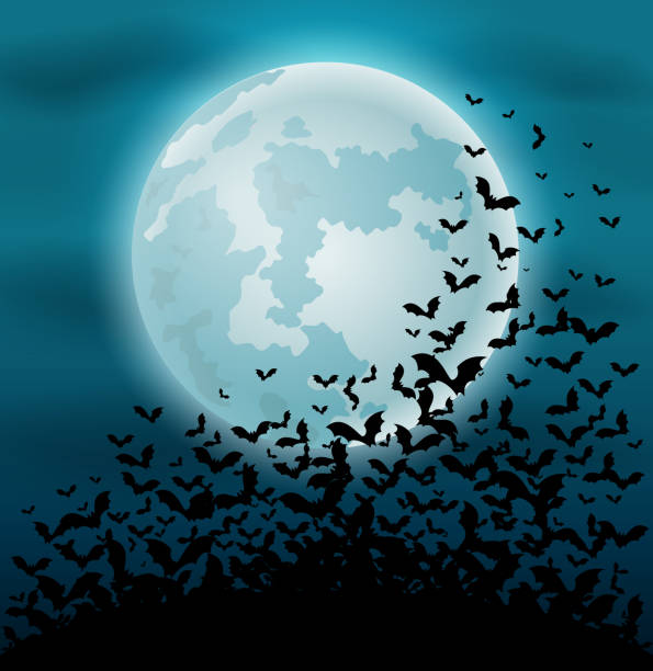 halloween night background with bat and full moon - bat stock illustrations, clip art, cartoons, & icons