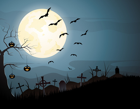 Halloween night spooky background with pumpkins and flying bats. Vector