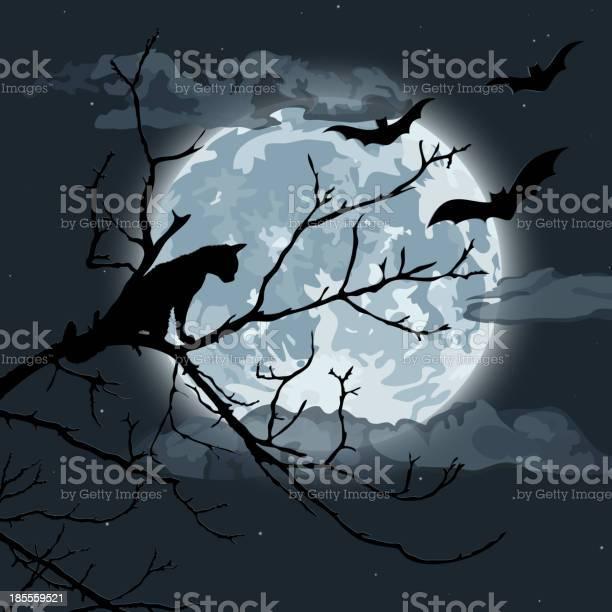 Halloween night vector id185559521?b=1&k=6&m=185559521&s=612x612&h=d6wwiiyztuzz5kctouj7wgdlubgnfxhiduad4izlfyy=
