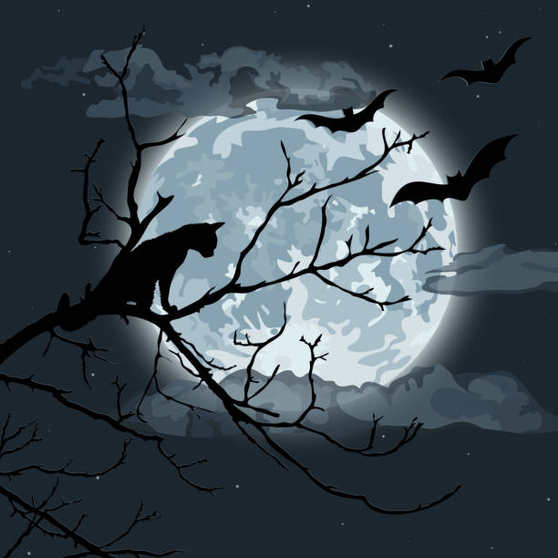 Halloween night Black cat in a tree surrounded by bats. EPS10 vector illustration, global colors, easy to modify. scary halloween scene silhouettes stock illustrations