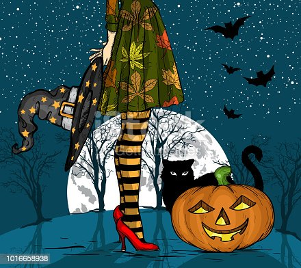 istock Halloween night. Witch with wizard hat in hand, black cat and pumpkin, big moon on background 1016658938
