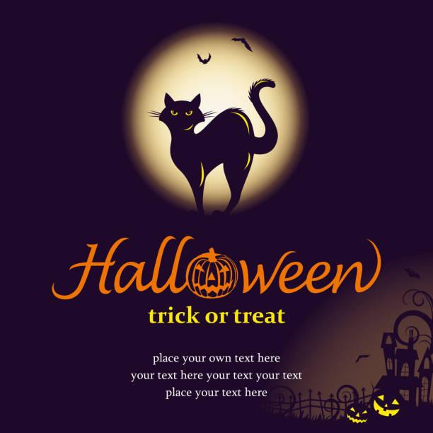 Halloween night with black cat Halloween night with black cat background. black cat stock illustrations