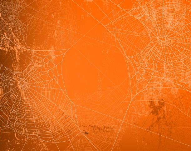 illustrazioni stock, clip art, cartoni animati e icone di tendenza di halloween arancione parete vettoriale sfondo con ragnatela - halloween