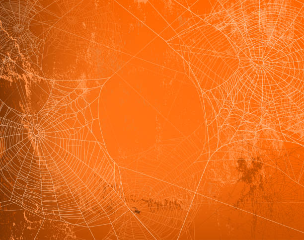 halloween orange wall vector background with spider web shabby orange wall covered with spooky spider web - halloween theme bright copy space background arachnid stock illustrations