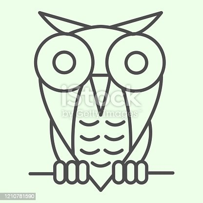 istock Halloween owl thin line icon. Single spooky owl sitting on a tree branch outline style pictogram on white background. Halloween or Witchcraft signs for mobile concept and web design. Vector graphics. 1210781590