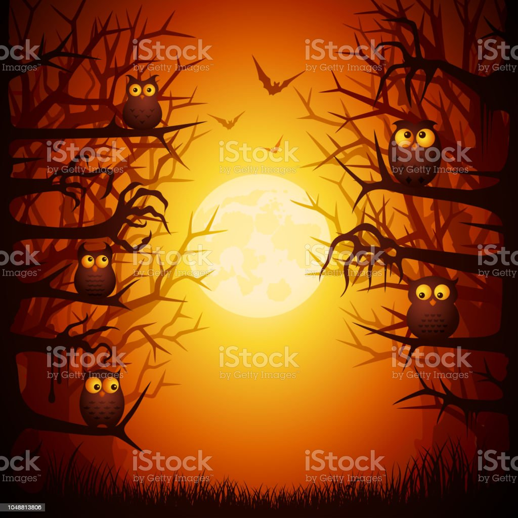 Halloween Owls vector art illustration