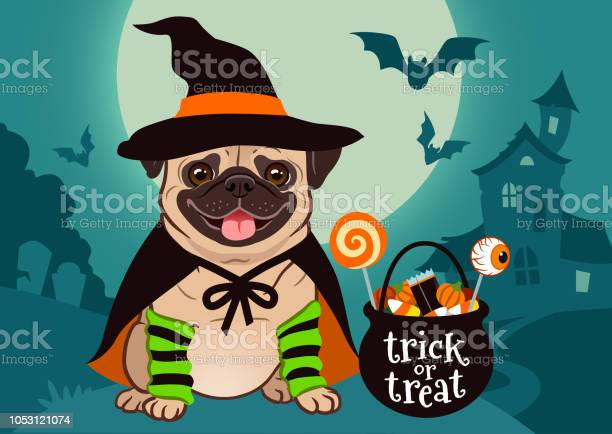 Halloween pug dog dressed as witch with hat cape cauldron with candy vector id1053121074?b=1&k=6&m=1053121074&s=612x612&h=v5 jw4cxu1x0q8kfja4rbhz9cxqgknin4lzblookmqu=