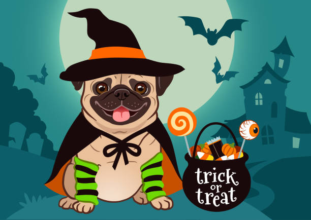 Halloween pug dog dressed as witch with hat, cape, cauldron with candy, against spooky scene with full moon, haunted house, forest cemetery. Halloween, dog lovers, pet costume theme for posters, cards Halloween pug dog dressed as witch with hat, cape, cauldron with candy, against spooky scene with full moon, haunted house, forest cemetery. Halloween, dog lovers, pet costume theme for posters, cards pet clothing stock illustrations