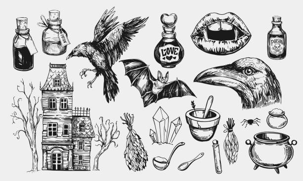 halloween set with hanted house, raven, potion, bat, vampire mouth. hand drawn illustration converted to vector - bat stock illustrations, clip art, cartoons, & icons
