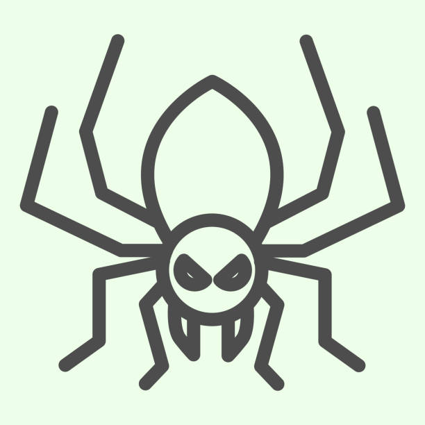Halloween spider line icon. Scary spider silhouette outline style pictogram on white background. Halloween and mystery sign for mobile concept and web design. Vector graphics. Halloween spider line icon. Scary spider silhouette outline style pictogram on white background. Halloween and mystery sign for mobile concept and web design. Vector graphics arachnid stock illustrations