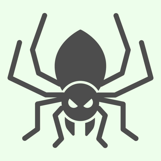 Halloween spider solid icon. Scary spider silhouette glyph style pictogram on white background. Halloween and mystery sign for mobile concept and web design. Vector graphics. Halloween spider solid icon. Scary spider silhouette glyph style pictogram on white background. Halloween and mystery sign for mobile concept and web design. Vector graphics arachnid stock illustrations
