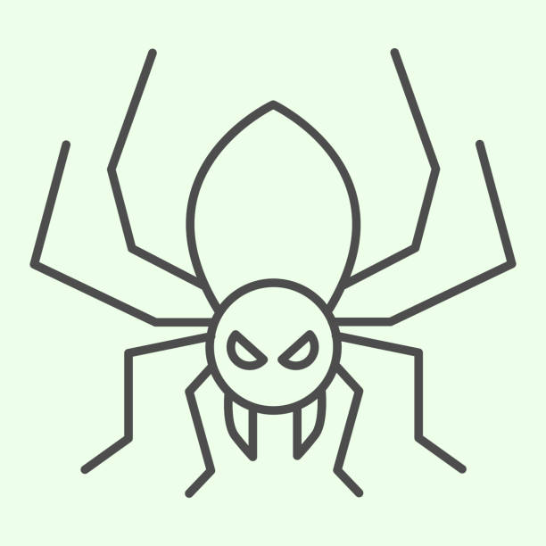 Halloween spider thin line icon. Scary spider silhouette outline style pictogram on white background. Halloween and mystery sign for mobile concept and web design. Vector graphics. Halloween spider thin line icon. Scary spider silhouette outline style pictogram on white background. Halloween and mystery sign for mobile concept and web design. Vector graphics arachnid stock illustrations