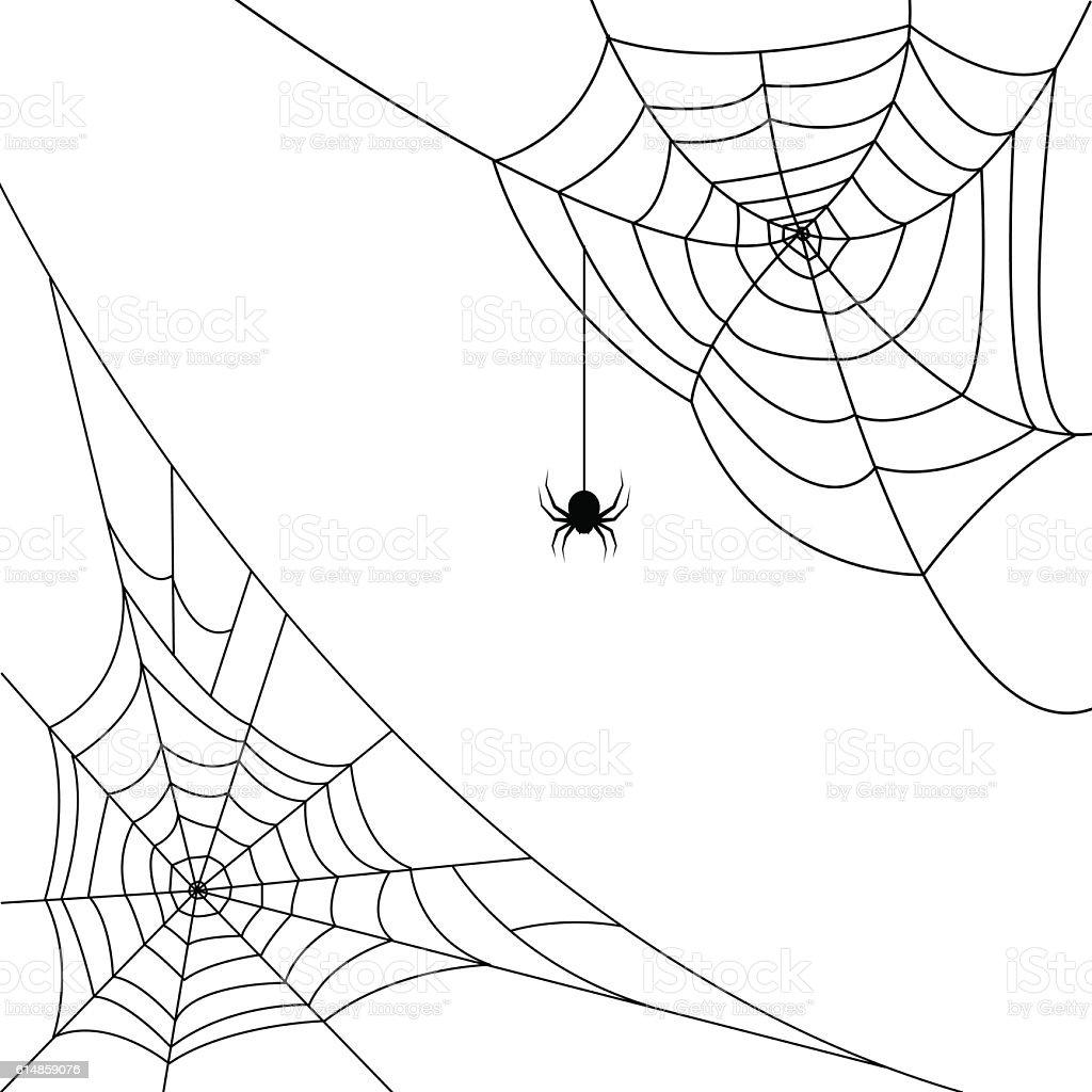 halloween spider web and spider hector venom cobweb vector