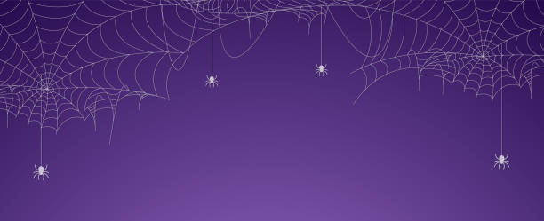 illustrazioni stock, clip art, cartoni animati e icone di tendenza di striscione ragnatela di halloween con ragni, sfondo ragnatela - halloween