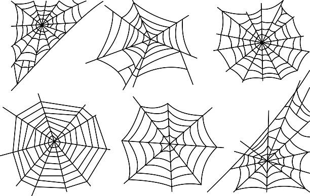 royalty free spider web clip art vector images illustrations istock