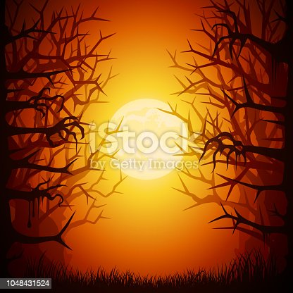 Halloween Spooky Forest
