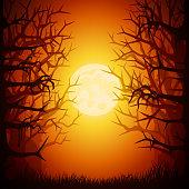istock Halloween Spooky Forest 1048431524