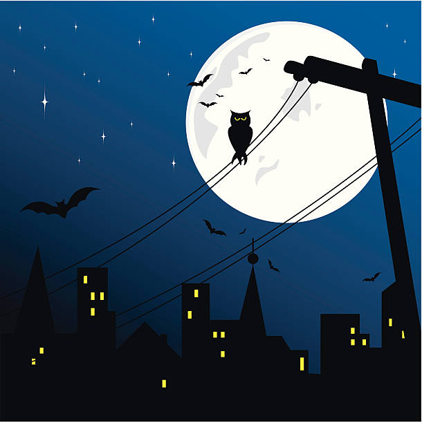 Halloween Spooky city in Halloween.Zip contains high resolution jpeg,AI8,eps8 and pdf. See also; spooky halloween town stock illustrations