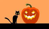 Black cat and a Halloween cut pumpkin lantern