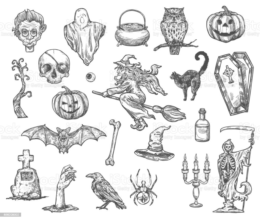 Halloween witch monsters vector sketch icons set vector art illustration