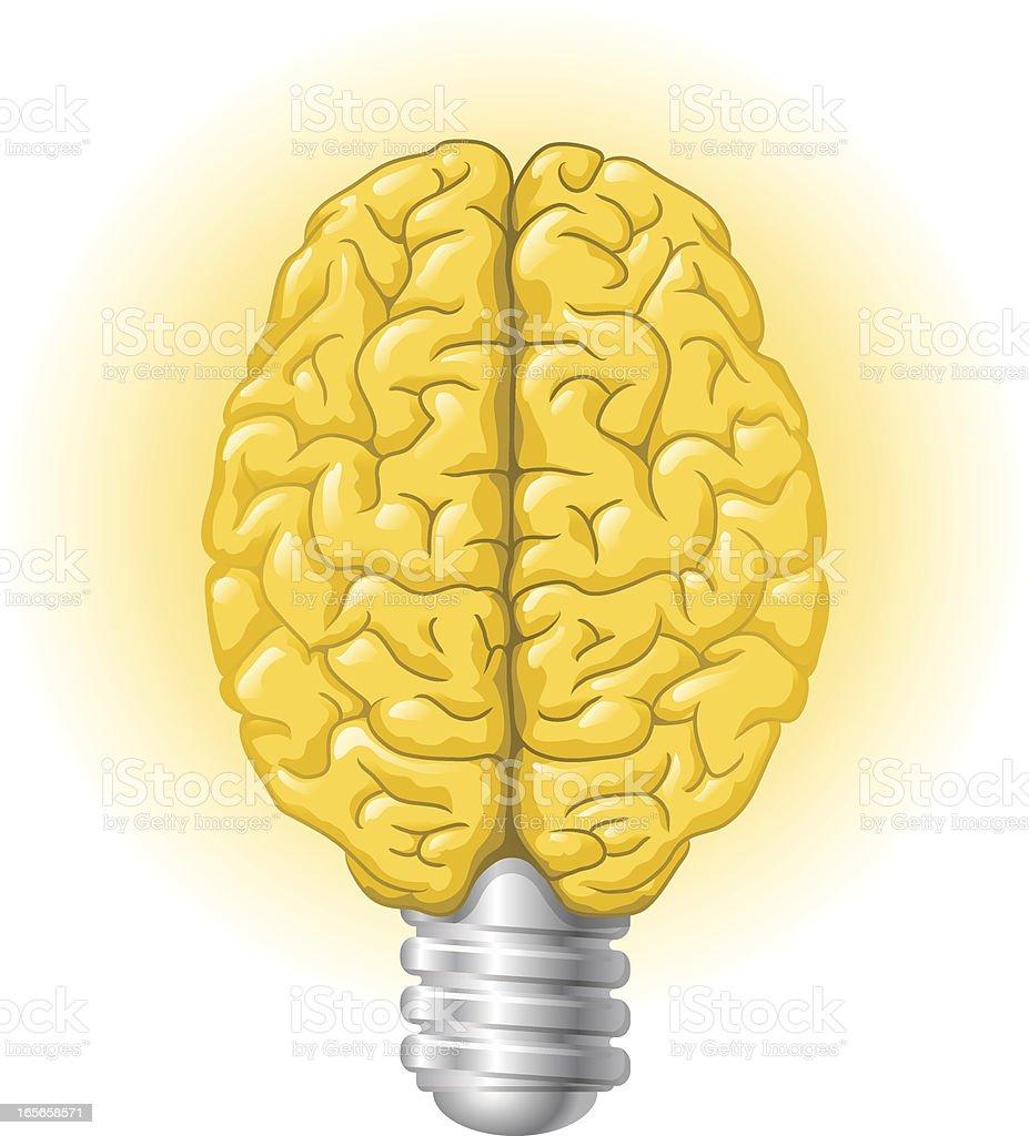 Halogen lightbulb brain royalty-free stock vector art