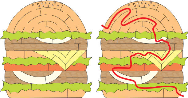 Labirinto de hambúrguer - ilustração de arte em vetor