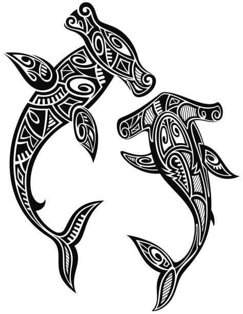 Hammer sharks tattoo in Maori tribal style vector art illustration