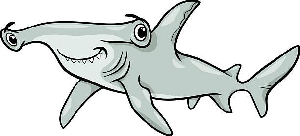 Best Hammerhead Shark Illustrations, Royalty-Free Vector ...