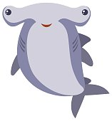 Hammerhead shark on white background