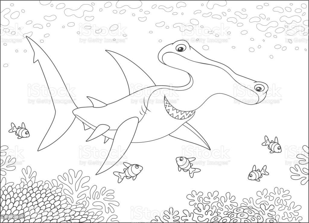 çekiç Kafalı Köpek Balığı Bir Resif üzerinde Stok Vektör Sanatı