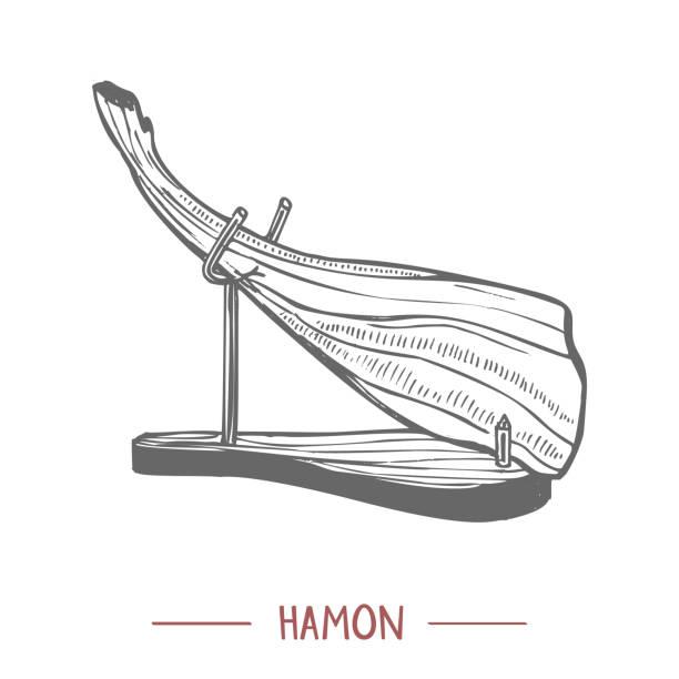 illustrations, cliparts, dessins animés et icônes de hamon illustration tirée en main style graphique - cuisine espagnole