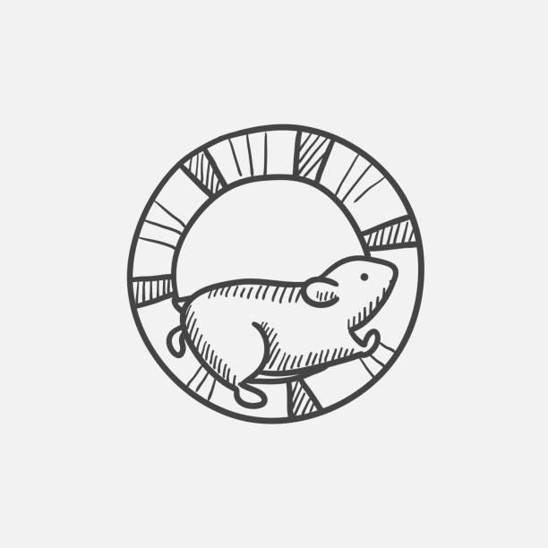 hamster läuft in das radsymbol skizze - hamsterhaus stock-grafiken, -clipart, -cartoons und -symbole