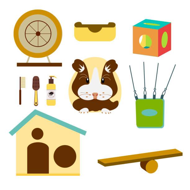 hamster pflege kollektion whith accessories, füttern, isoliert auf weißem hintergrund. vektor-illustration flachen design. - hamsterhaus stock-grafiken, -clipart, -cartoons und -symbole
