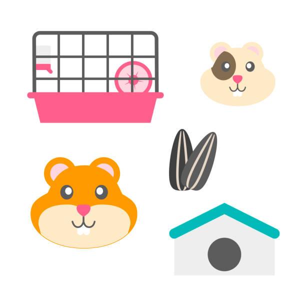 hamster mit hamster käfig hamster-rad und sonnenblumen-samen - hamsterhaus stock-grafiken, -clipart, -cartoons und -symbole