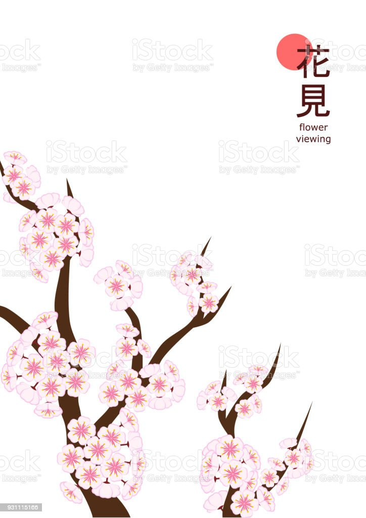 Hanami 2018 Einfache A4 Vertikal Große Kirschblüte Zweig Stock ...