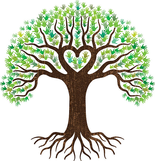 Top 60 Tree Roots Clip Art Vector Graphics And Illustrations Istock