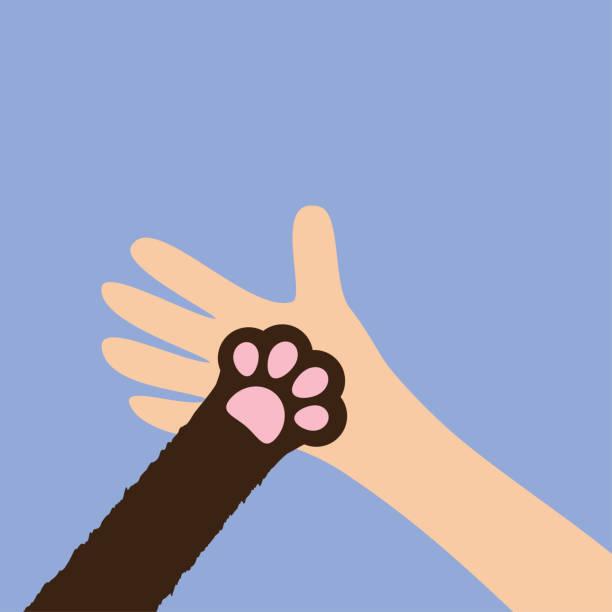 stockillustraties, clipart, cartoons en iconen met hand-arm kat hond paw print been voet te houden. close-up. helpen vaststellen van dierlijke huisdier doneren concept. vrienden voor altijd. zorg van de dierenarts. veterinaire dierenarts arts. flat. violette achtergrond. geïsoleerd. - adoptie