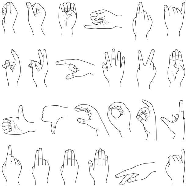 stockillustraties, clipart, cartoons en iconen met hand-collectie - menselijke ledematen