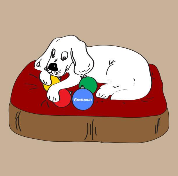 hand zu zeichnen, hund und weihnachtskugeln - hundebetten stock-grafiken, -clipart, -cartoons und -symbole