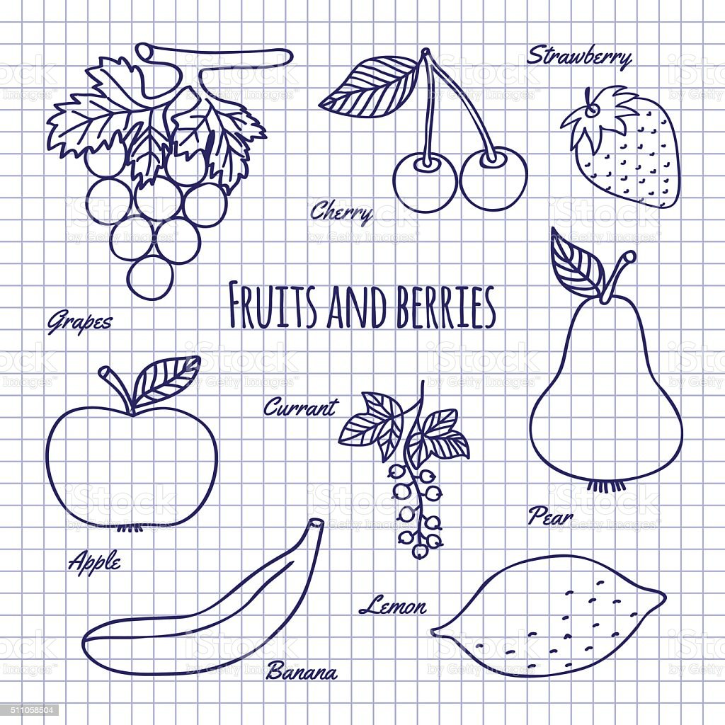 Hand Draw Fruits And Berry Stock Vector Art More Images Of Apple