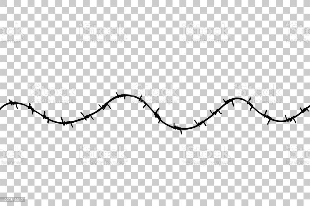 Hand Draw Sketch Of Seamless Barbed Wire At Transparent Effect