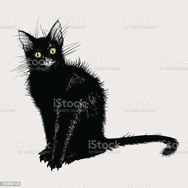 Hand drawing a black cat with green eyes vector id503890108?b=1&k=6&m=503890108&s=612x612&h=j73svdy5dsbvsg2k9gszkgcvkb7gp4cq1rhydpwe0sw=