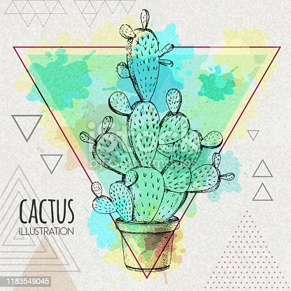 Hand drawing cactus vector illustration on artistic watercolor triangle background